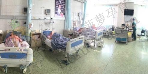 待产多人间病房