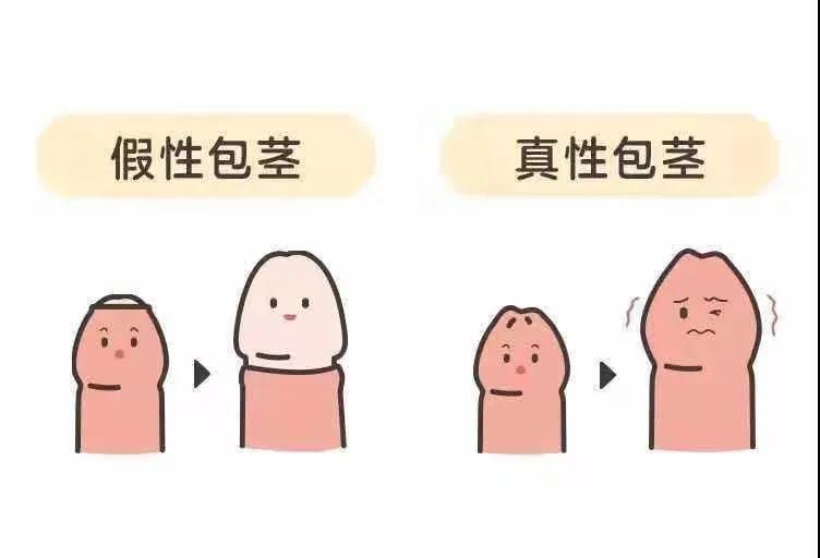 1592445687980984.jpg